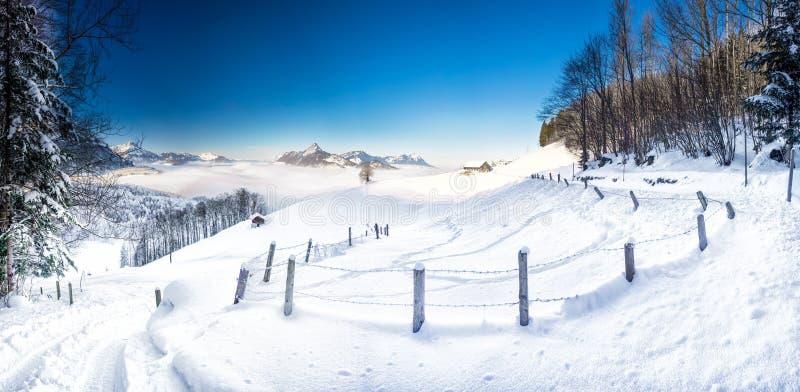Träd som täckas av nya insnöade schweiziska fjällängar Bedöva vinterlandskap royaltyfri fotografi