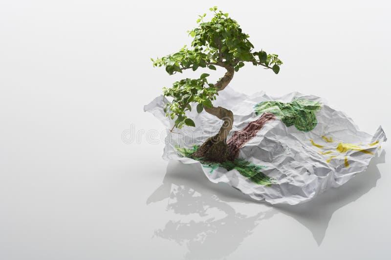 Träd som växer från teckning royaltyfri bild