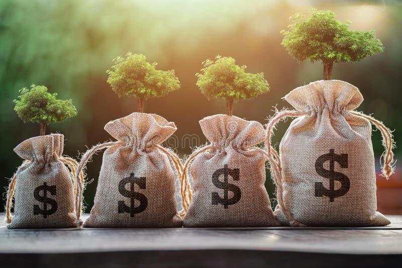 träd som växer på pengarpåse begreppsbesparing royaltyfria foton