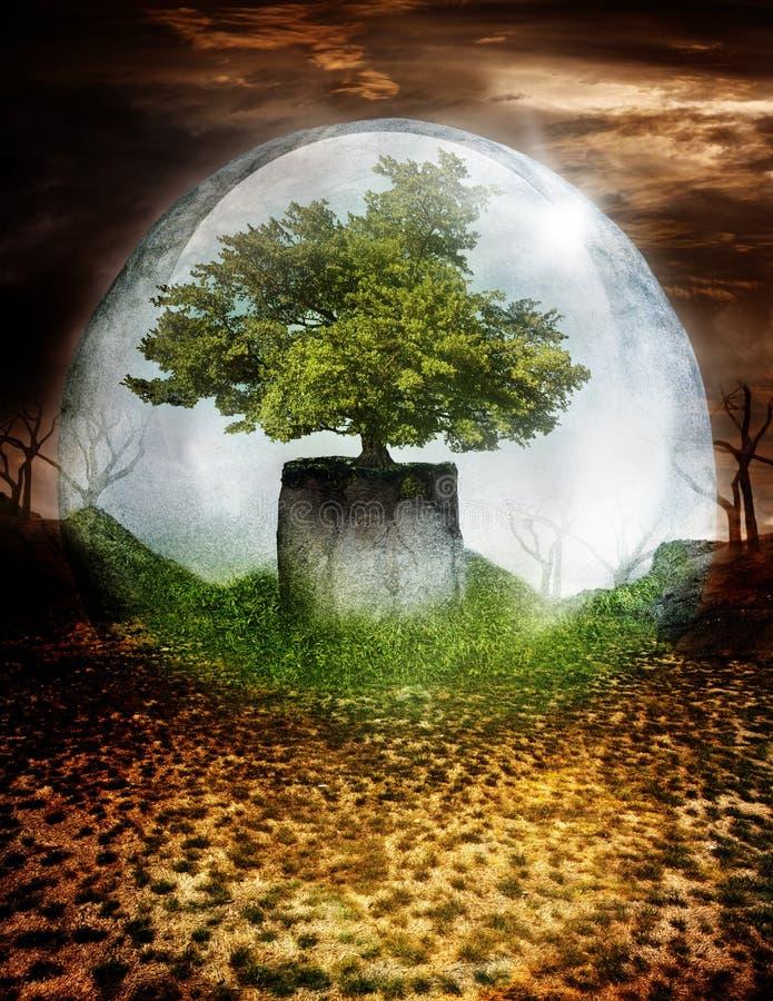 Träd under skyddande kupol arkivfoton