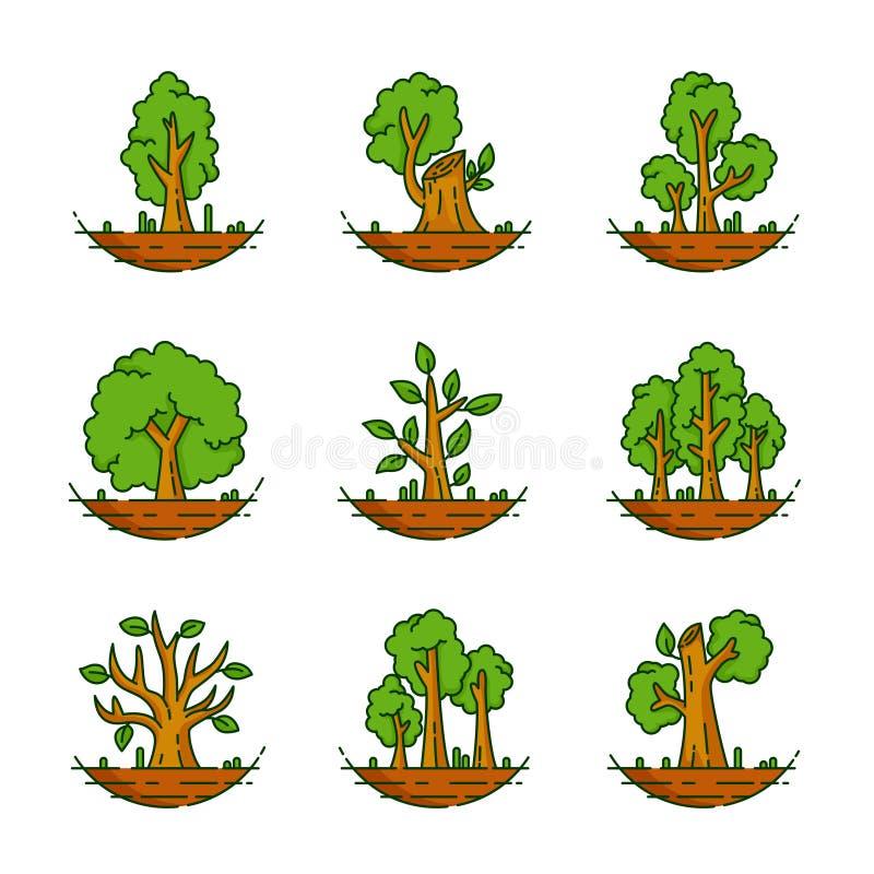 Träd växt, skog, natur, botanisk illustration, trädsamling royaltyfri illustrationer