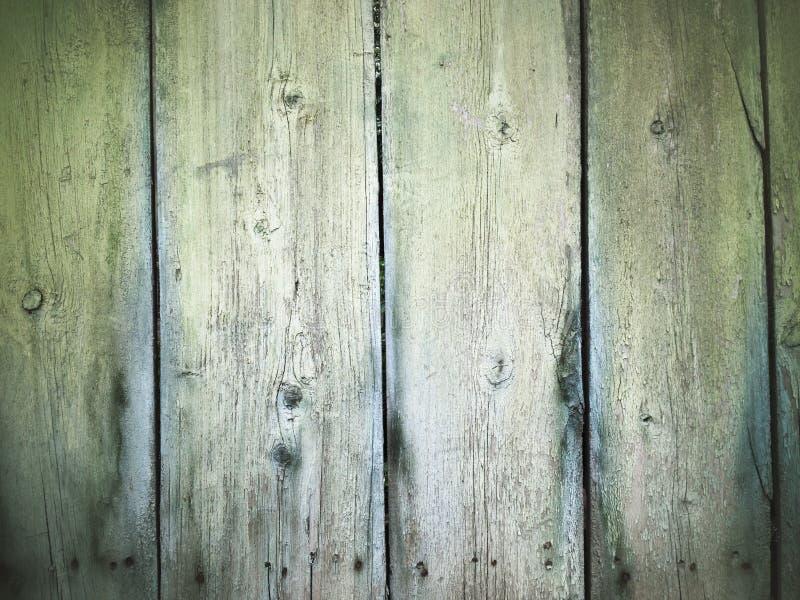 trädemaged trä för golvgrungetextur arkivbilder