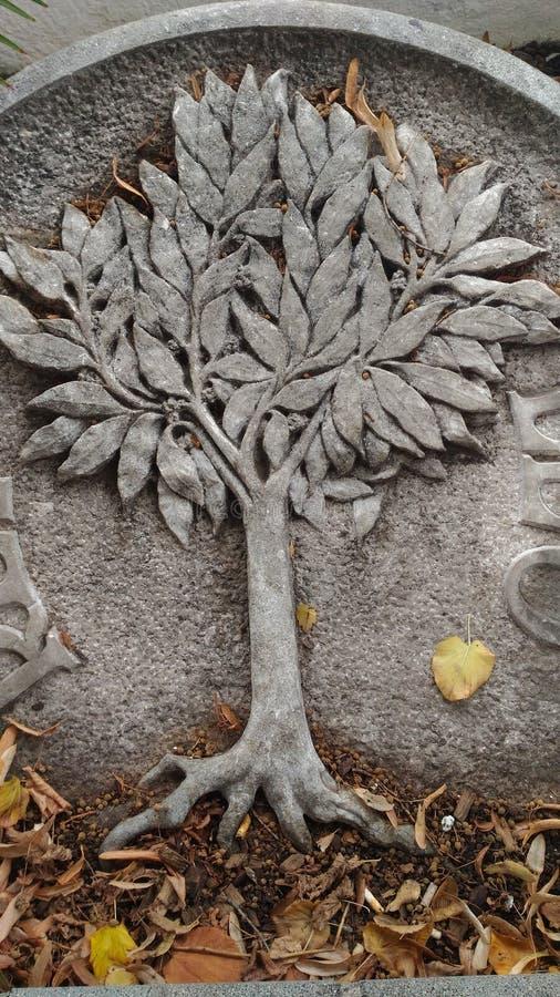 Trädet av liv royaltyfria foton