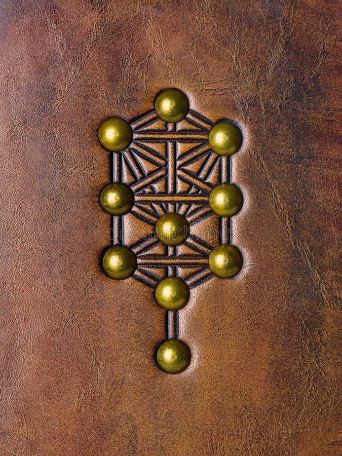 Trädet av liv, Kabbalah symbol som utföra i relief till åldrigt brunt läder fotografering för bildbyråer