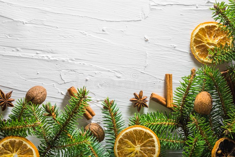 Trädet för barrträdet för ris för vit bakgrund för jul torkade det nya citruns royaltyfria bilder