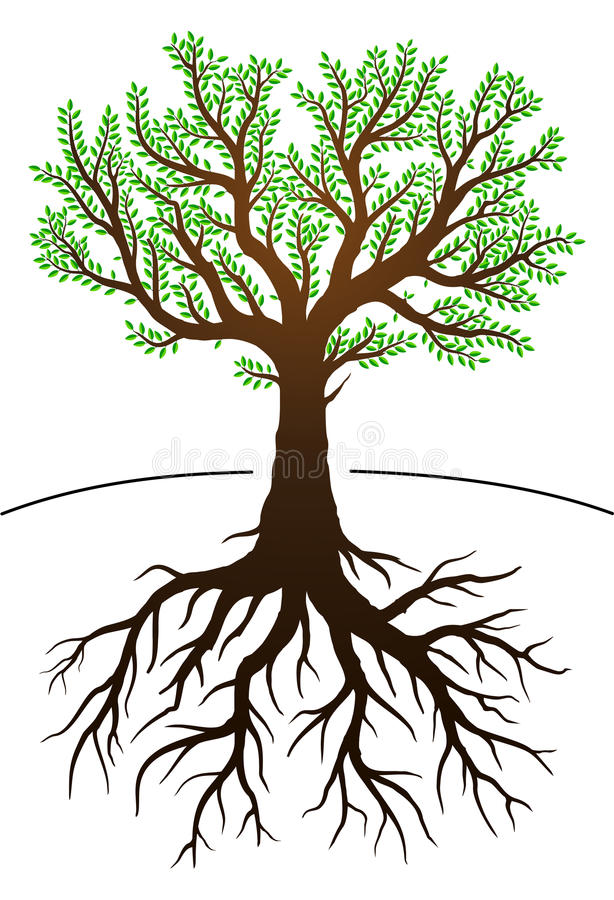 Trädet och dess rotar vektor illustrationer