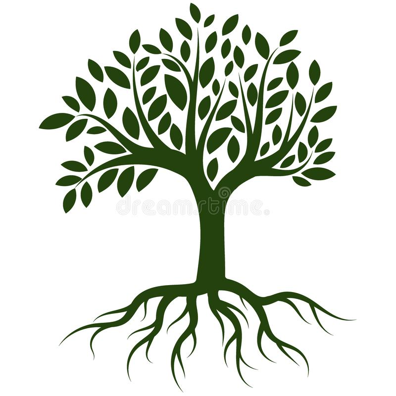 Trädet rotar logovektorn stock illustrationer
