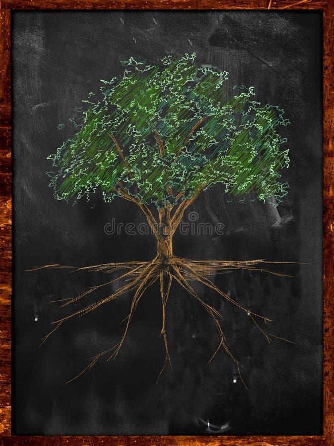 Trädet skissar färgsidor och rotar på svart tavla stock illustrationer