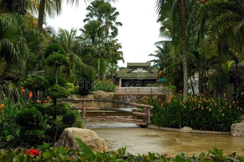 Trädgård Gratis Arkivbild