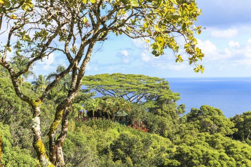 Trädgård av den eden landskapsikten på Maui, Hawaii royaltyfria bilder