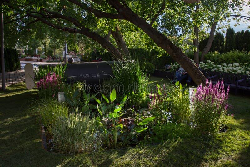 Trädgård av en från deltagare royaltyfria bilder