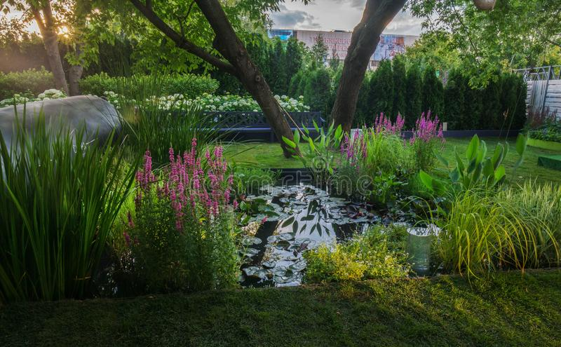 Trädgård av en av konkurrenterna royaltyfri fotografi