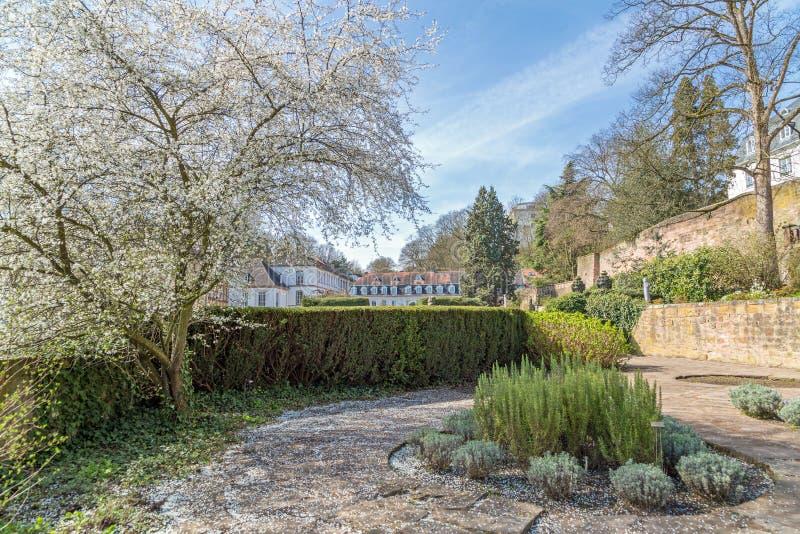 Trädgård av slotten i Saarbrucken royaltyfria foton