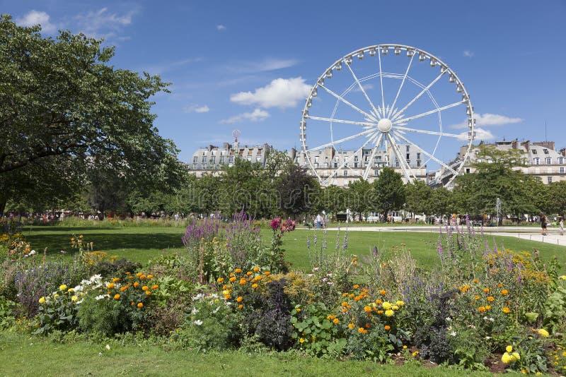 Trädgård av Tuilleriesen, Paris fotografering för bildbyråer