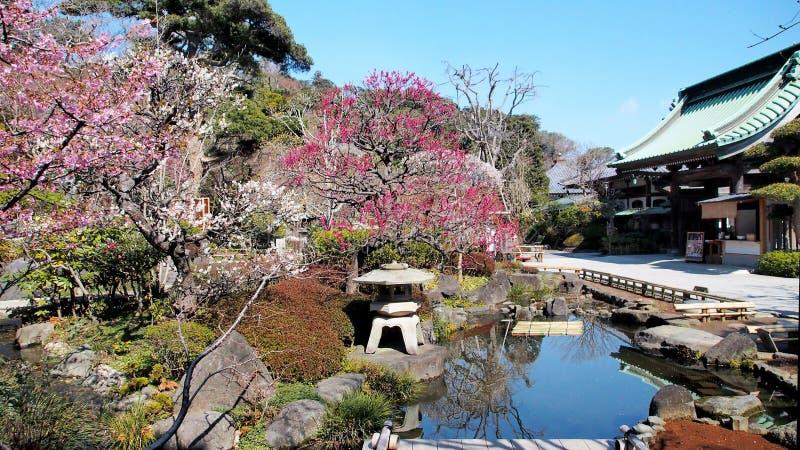 Trädgård för japansk stil arkivbild