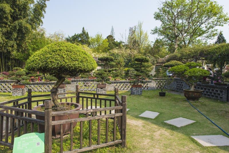 Trädgård för Rugao vattenmålning royaltyfri fotografi