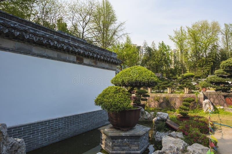 Trädgård för Rugao vattenmålning arkivbild