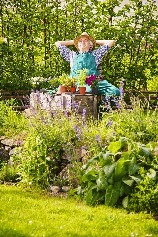 Trädgård för växter för trädgårdsmästareStraw hatt royaltyfria bilder
