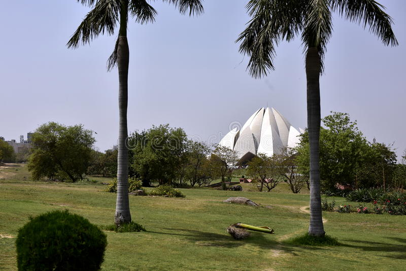 Trädgård i den Indien Lotos templet arkivfoto