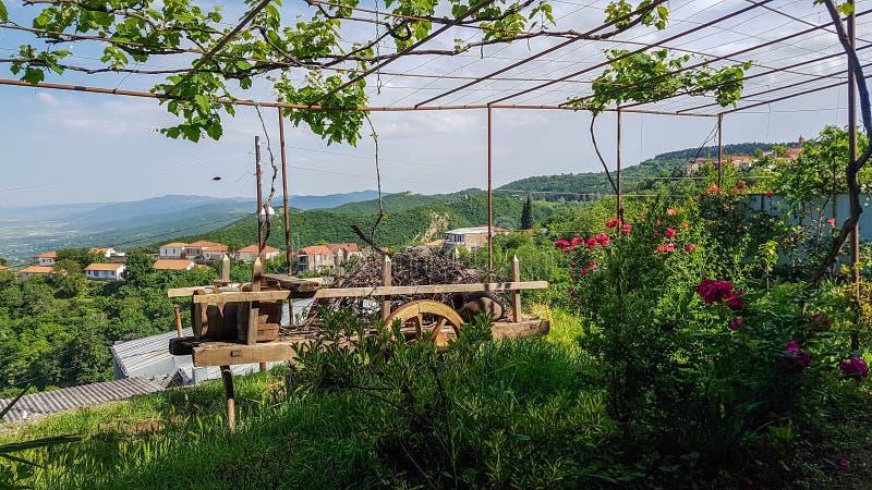 Trädgård i den Sighnaghi eller Signagi staden och den Alazani dalen i Georgia, Kaukasus royaltyfria bilder