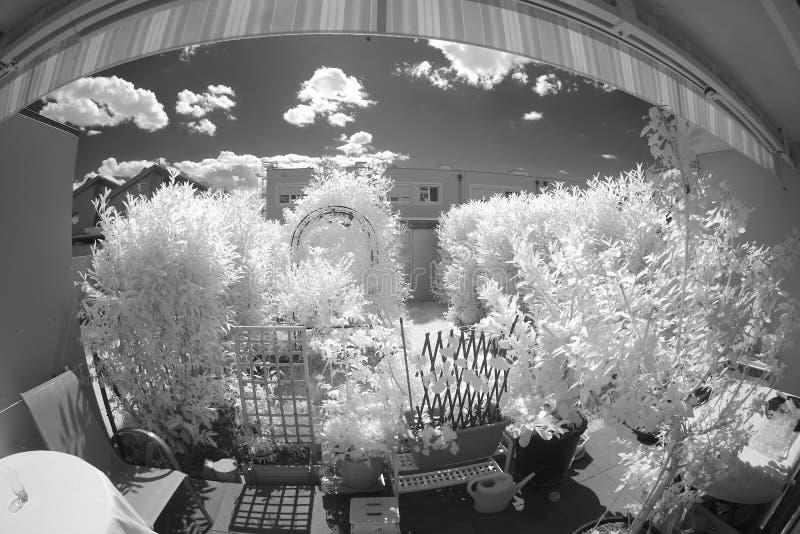 Trädgård i infrarött ljus royaltyfri bild