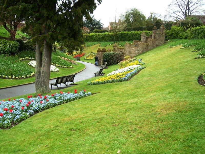 Trädgård och blommor i Guildford arkivbilder
