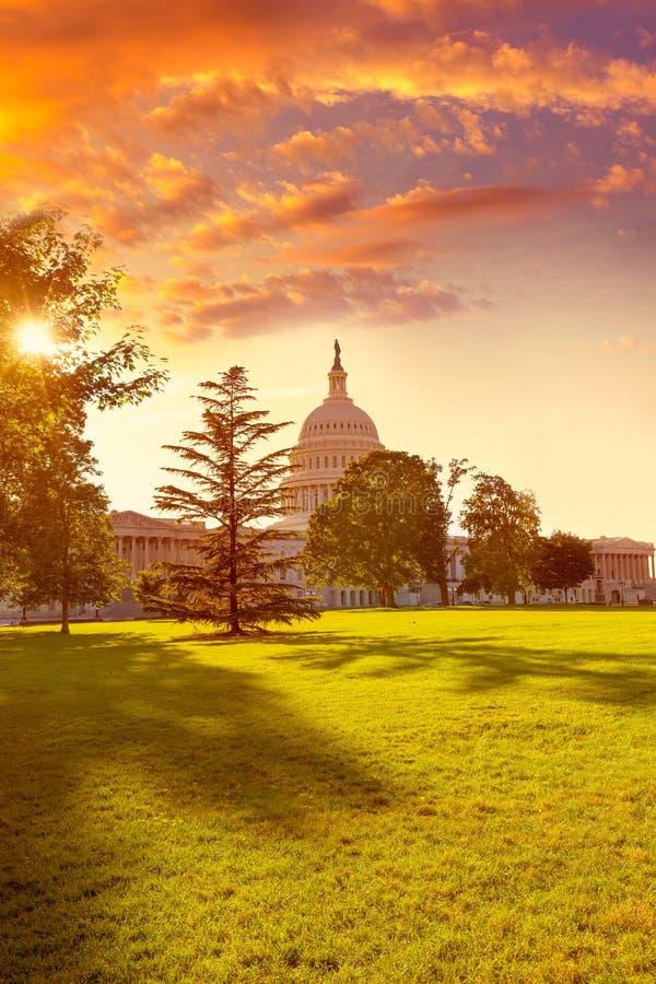 Trädgård USA för solnedgång för KapitoliumbyggnadsWashington DC royaltyfri fotografi