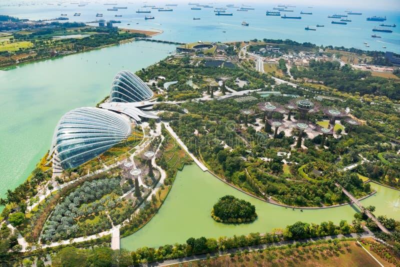 Trädgård vid fjärden, Singapore arkivbild