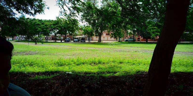 Trädgård view2 fotografering för bildbyråer
