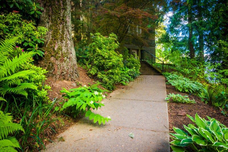 Trädgårdar längs en gångbana utanför den Pittock herrgården, i Portland arkivfoton