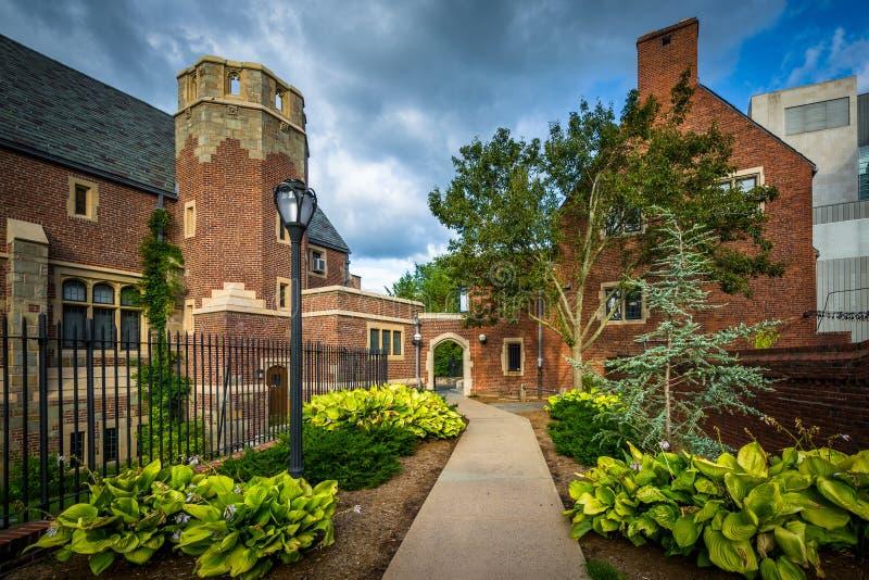Trädgårdar längs gångbanan och byggnader på Yale University, i nytt H royaltyfri fotografi