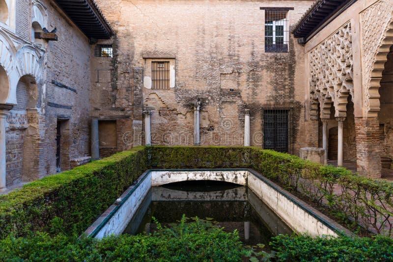 Trädgårdar och damm i alcazaren av Seville arkivfoton