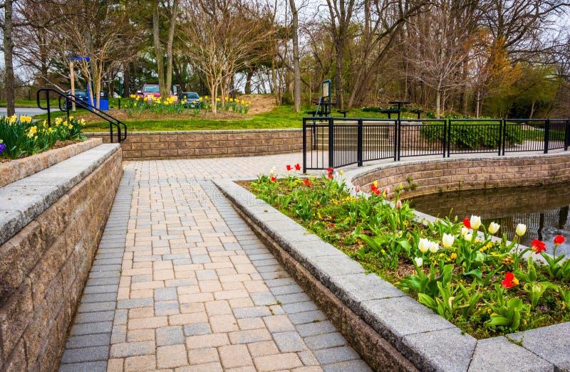 Trädgårdar och gångbanan på Wilde sjön parkerar, i Columbia, Maryland arkivbild