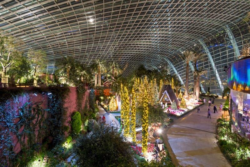 Trädgårdar vid fjärdblommakupolen, Singapore arkivfoton