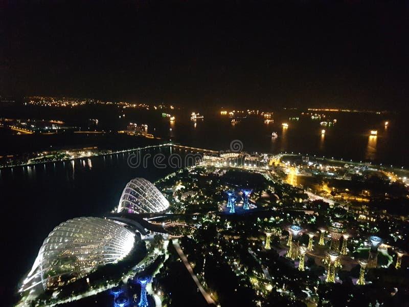 Trädgårdar vid fjärden på natten, Singapore arkivbilder