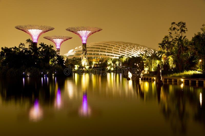 Trädgårdar vid fjärden Singapore arkivfoton