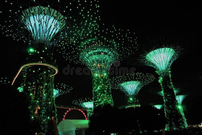 Trädgårdar vid fjärden - Singapore Asien royaltyfri bild
