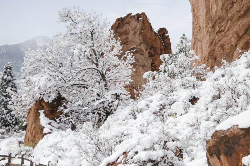 Trädgården av gudarna parkerar i vinter arkivfoto