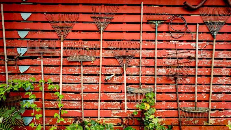 Trädgården krattar att hänga på den röda ladugårdväggen royaltyfri foto