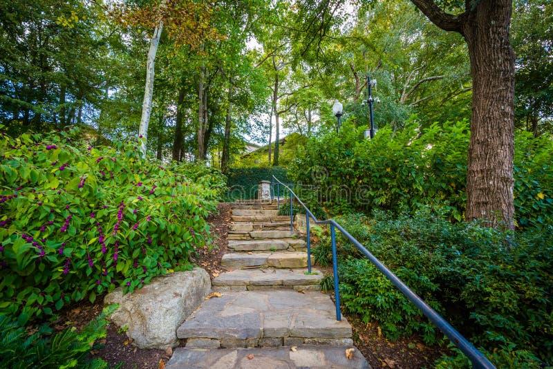 Trädgården och trappan på nedgångarna parkerar på det gällt, i Greenville, arkivfoto