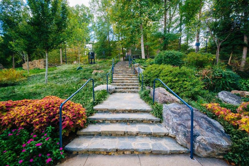 Trädgården och trappan på nedgångarna parkerar på det gällt, i Greenville, royaltyfria foton