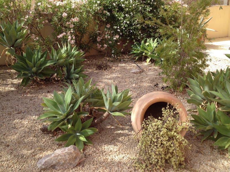 Trädgården specificerar arkivfoton