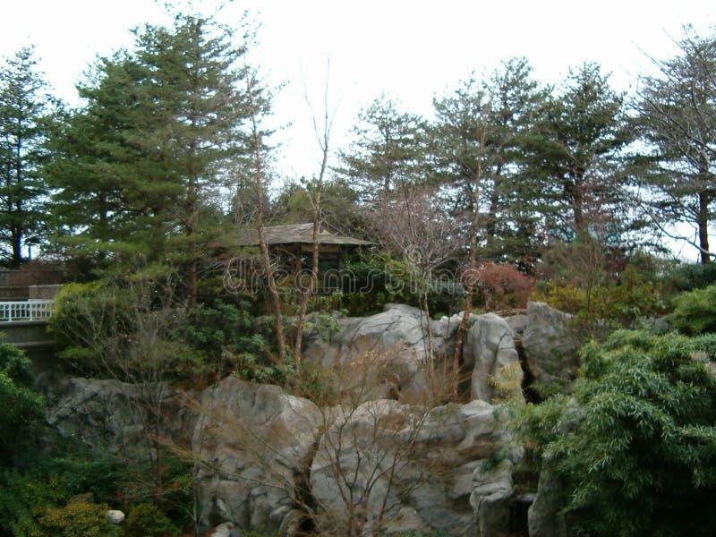 Trädgården under himlen royaltyfri foto
