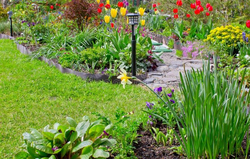 Trädgårdgarnering med en variation av vårblommor arkivbild