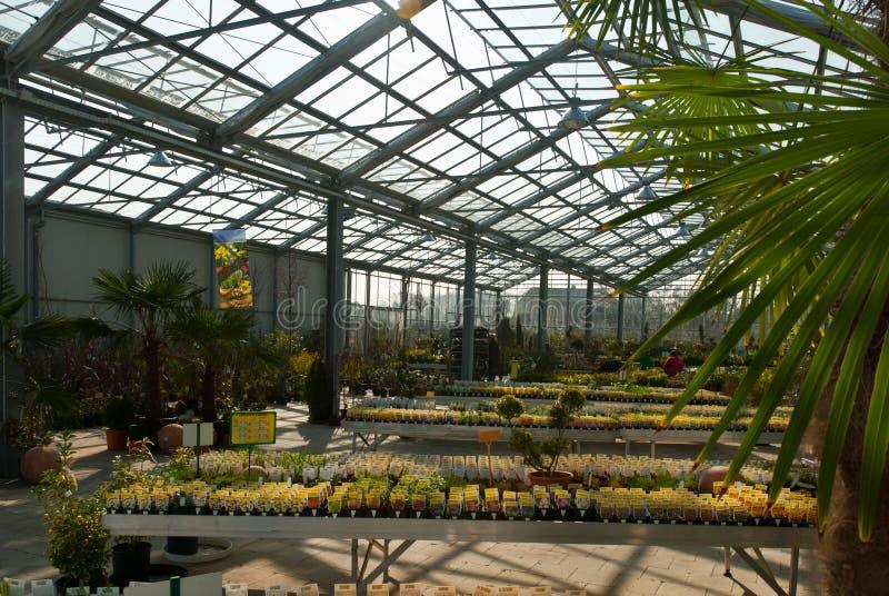 Trädgårdmitt med ett exponeringsglastak under en blå himmel royaltyfria bilder