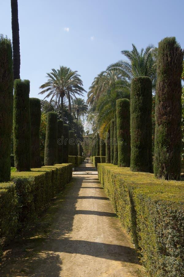Trädgårds- Alcazarslott arkivbild