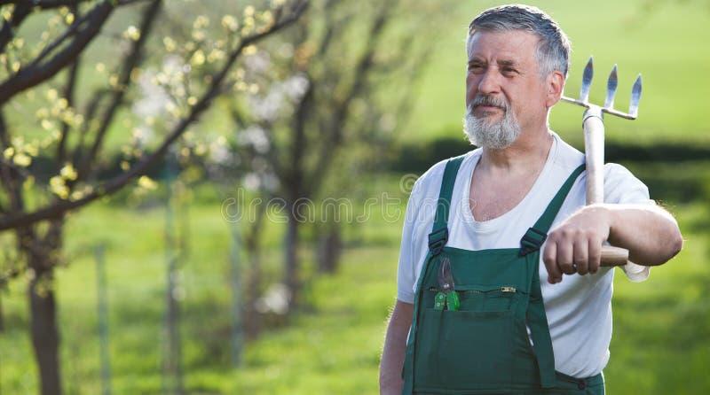 trädgårds- arbeta i trädgården hans man royaltyfria foton