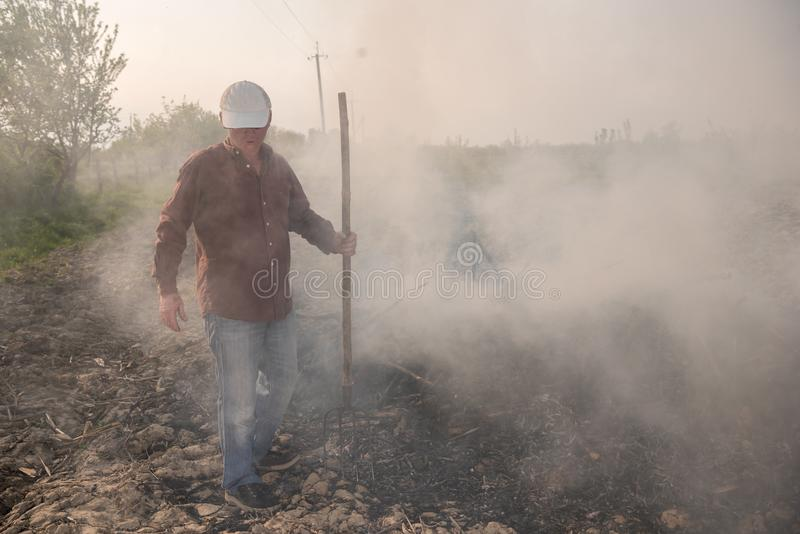 trädgårds- arbete Bondebränningen torkade filialer arkivfoto