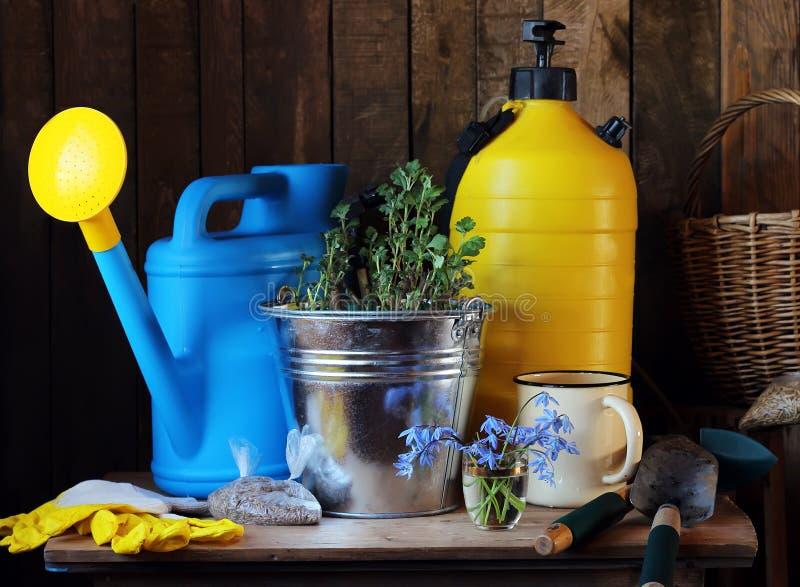 trädgårds- arbete Trädgårds- hjälpmedel: att bevattna kan, skyffeln, hink, fotografering för bildbyråer