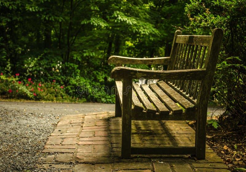 Trädgårds- bänk royaltyfri foto